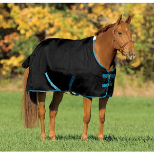 Riders International Pony Turnout Sheet