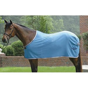 TRIPLE CROWN WOOL DRESS SHEET