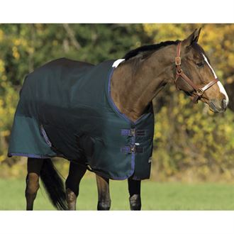 Riders International Medium Weight Turnout Blanket