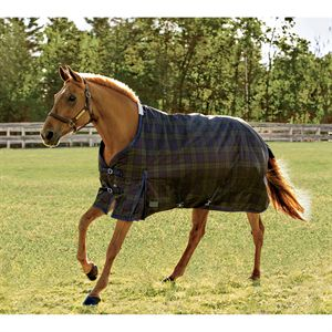 RIDERS PLAID TURNOUT RUG
