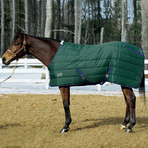 Riders International Medium Weight Stable Blanket
