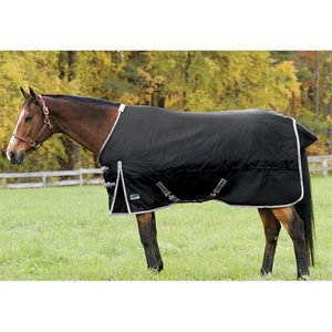 Riders International Supreme Warmblood Turnout Blanket