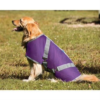 RiderÆs International Fleece-Lined Dog Blanket