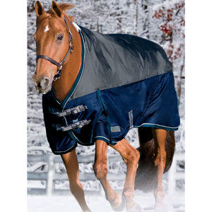 Riders International NorthWind Turnout Sheet