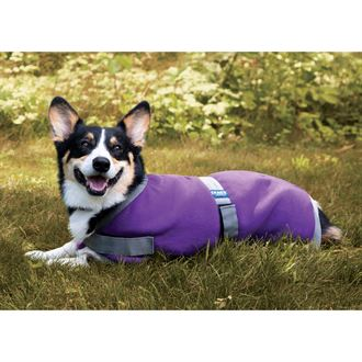 Rider?s International Fleece Dog Blanket
