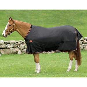 Big D Magnum Turnout Blanket