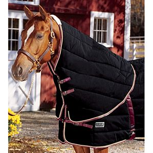 RiderÆs International Supreme Neck Cover