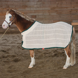 FRANCONIA IRISH KNIT PONY SHT