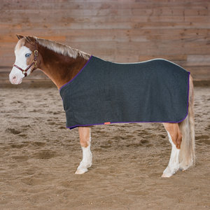 FRANCONIA WOOL PONY DRESS SHT