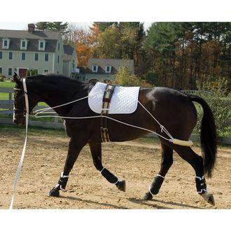 Pessoa Pony Training System