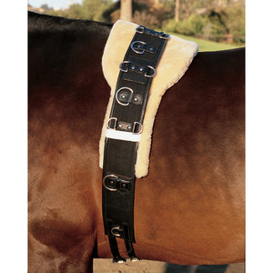 EQUINE COMFORT SURCINGLE PAD