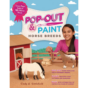 POP-OUT & PAINT