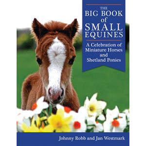 THE BIG BOOK OF SMALL EQUINES