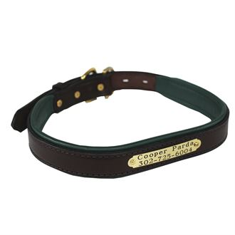 Padded Leather Nameplate Dog Collar