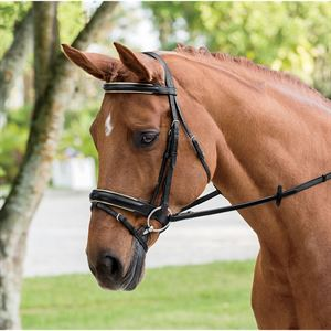 WARENDORF DELUXE PIPED BRIDLE