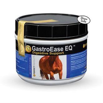 GASTRO EASE EQ 1LB