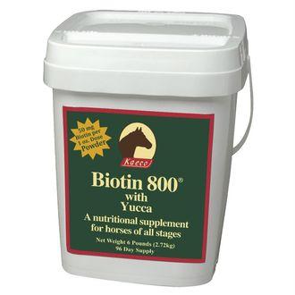 BIOTIN 800 POWDER 6LB