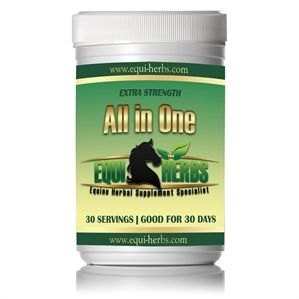 EQUI HERBS ALL IN ONE