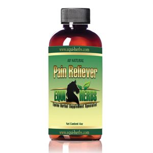 EQUI HERBS PAIN RELIEVER-4OZ