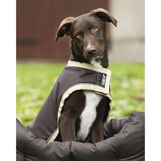 RAMBO WATERPROOF DOG BLANKET