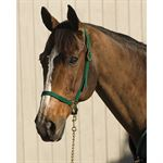 Horse Sized Nylon Grooming Halter
