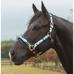 EQUINE COUTURE ASHLEY HALTER