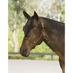 Dover Pro 3/4 Inch Leather Halter