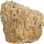 Natural Body Sponge
