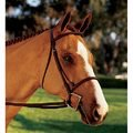 Showmark Square Raised Bridle