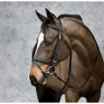 Suffolk Black Dressage Bridle