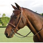 Circuit Grand Prix Bridle