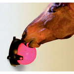 Tongue Twister? Horse Toy