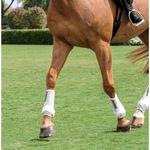 Iconoclast® Extra-Large Front Orthopedic Horse Boot