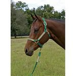 Custom Halter with Adjustable Chin and Snap