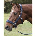 LAMI-CELL FLEECE LINED HALTER