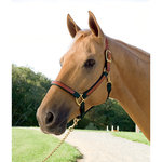 Dover Pro Leather Accent Breakaway Halter