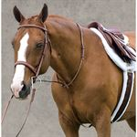 Rodrigo Raised Fancy Standing Martingale