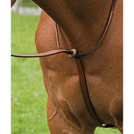 DERBY STANDING MARTINGALE