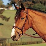 Circuit Padded Flash Bridle