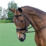 Vespucci Patent Leather Dressage Bridle