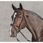HORSEWARE AMIGO DELUXE BRIDLE