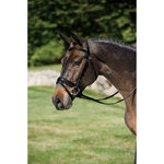 STUBBEN DRESSAGE BRIDLE