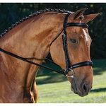 PDS CURVED BROS DRESSAGE BRIDL