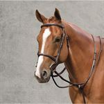 RODRIGO FANCY PADDED BRIDLE