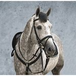 Horseware® Amigo® Event Bridle