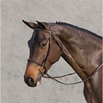 Ovation? Ultra Raised Bridle