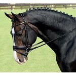 VESPUCCI ROLLED DRESS BRIDLE