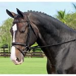 Warendorf Crystal Deluxe Dressage Bridle