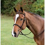 STUBBEN HUNTER BRIDLE