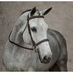 Crown Premier Fancy-Stitched Bridle